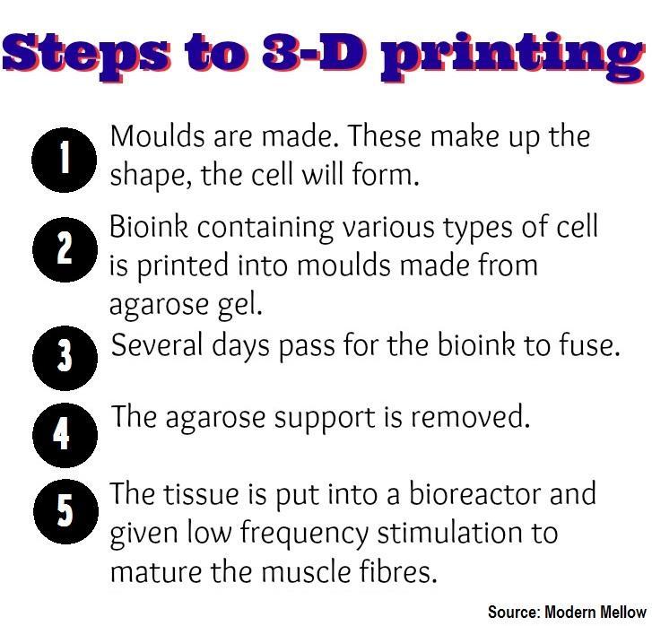 Printing process steps 3d printing process