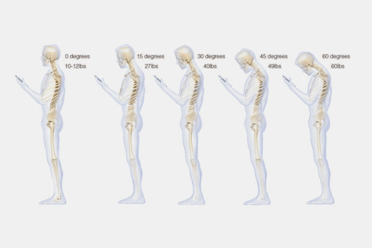 19-spine-study.w529.h352