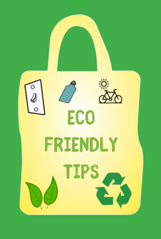 Eco-Friendly Tips