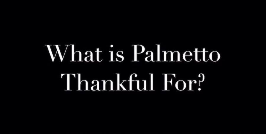 What is Palmetto Thankful For? (VIDEO)