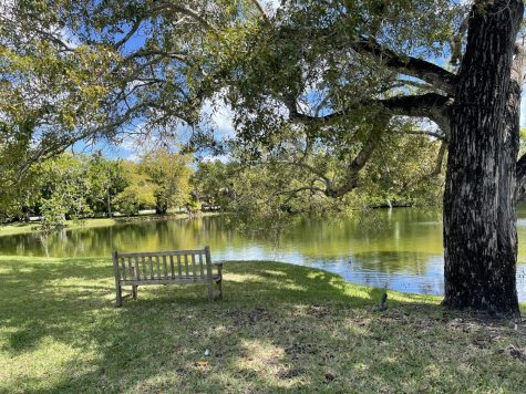 Lagoon in Fairchild where one can sit and enjoy the view.