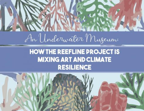 An Underwater Museum: How The Reefline Project is Mixing Art and Climate Resilience